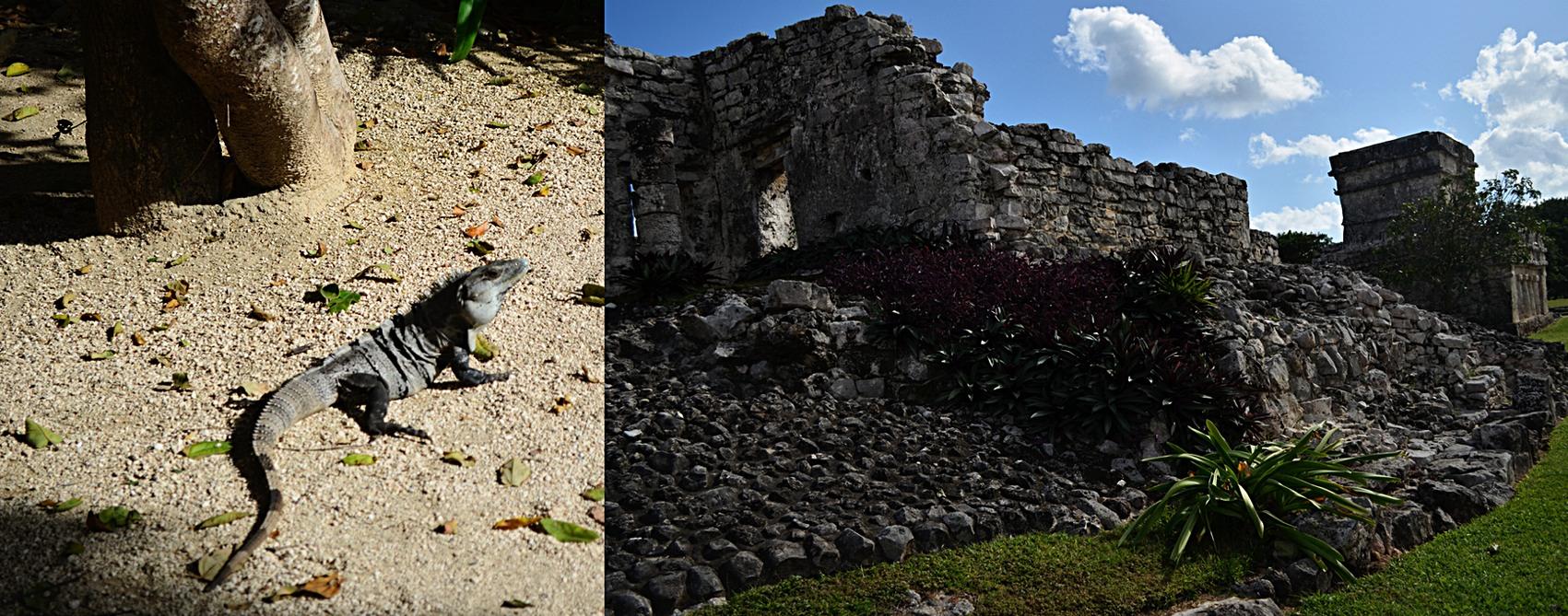 Mayan_Ruins_Tulum_7