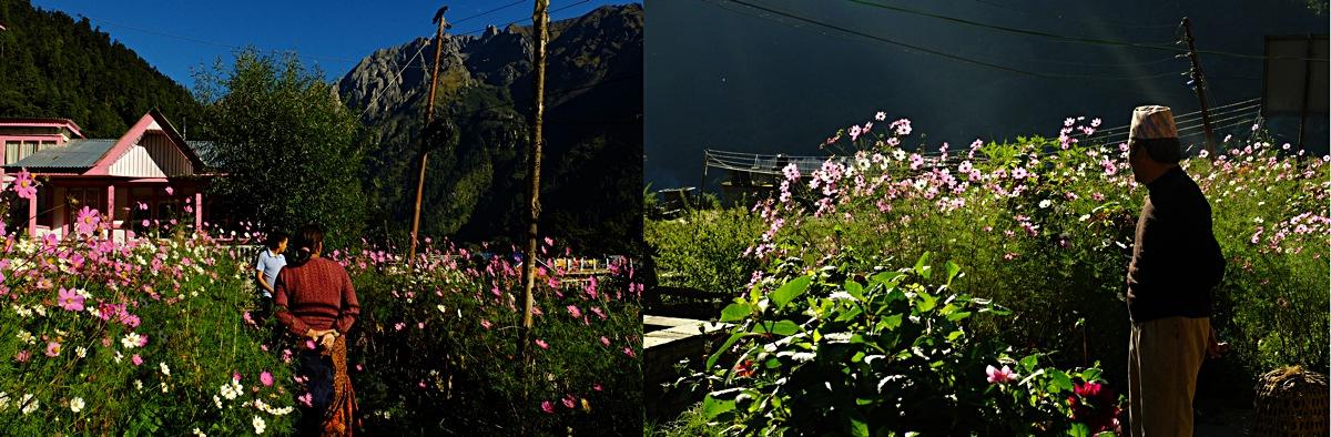 Annapurna_Nepal_11