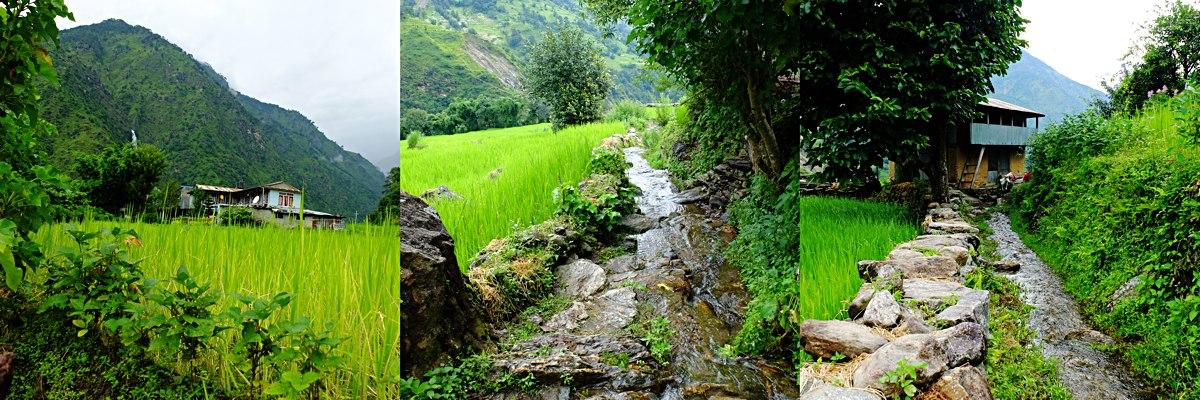 Annapurna_Trail