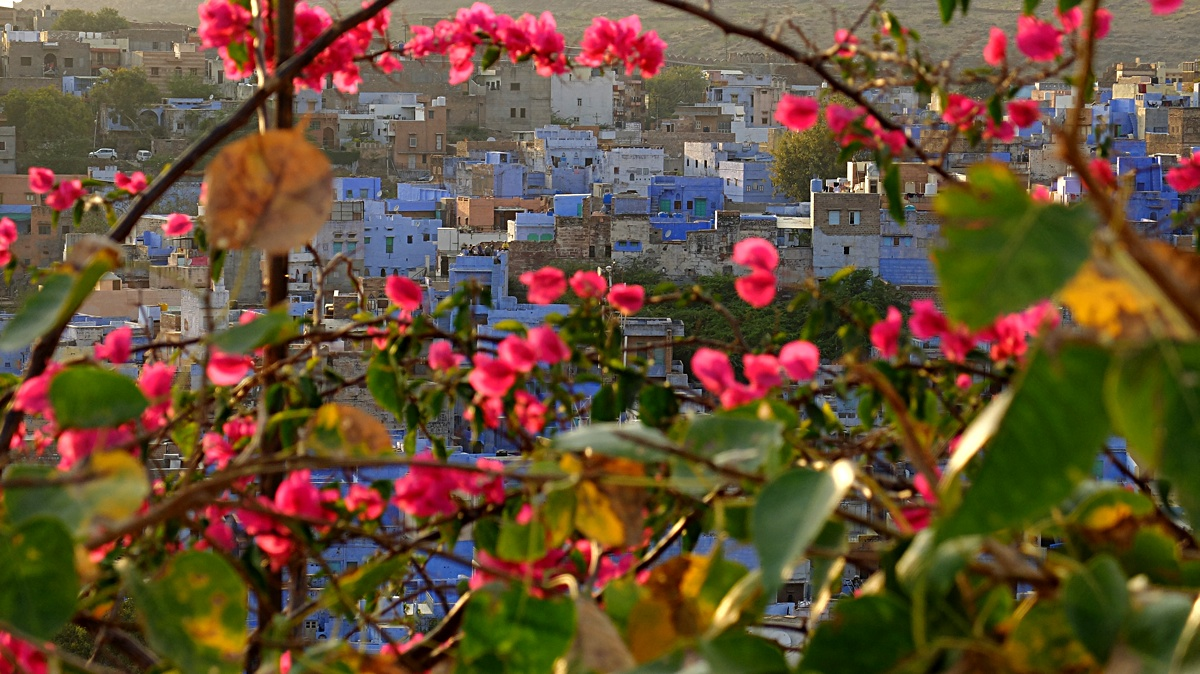 Jodhpur_blue_city_9