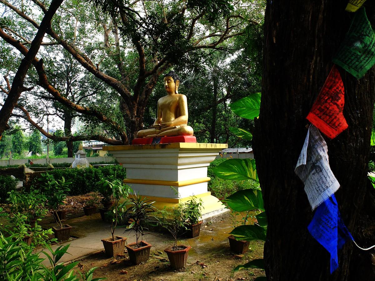 sidharta_gautama_5