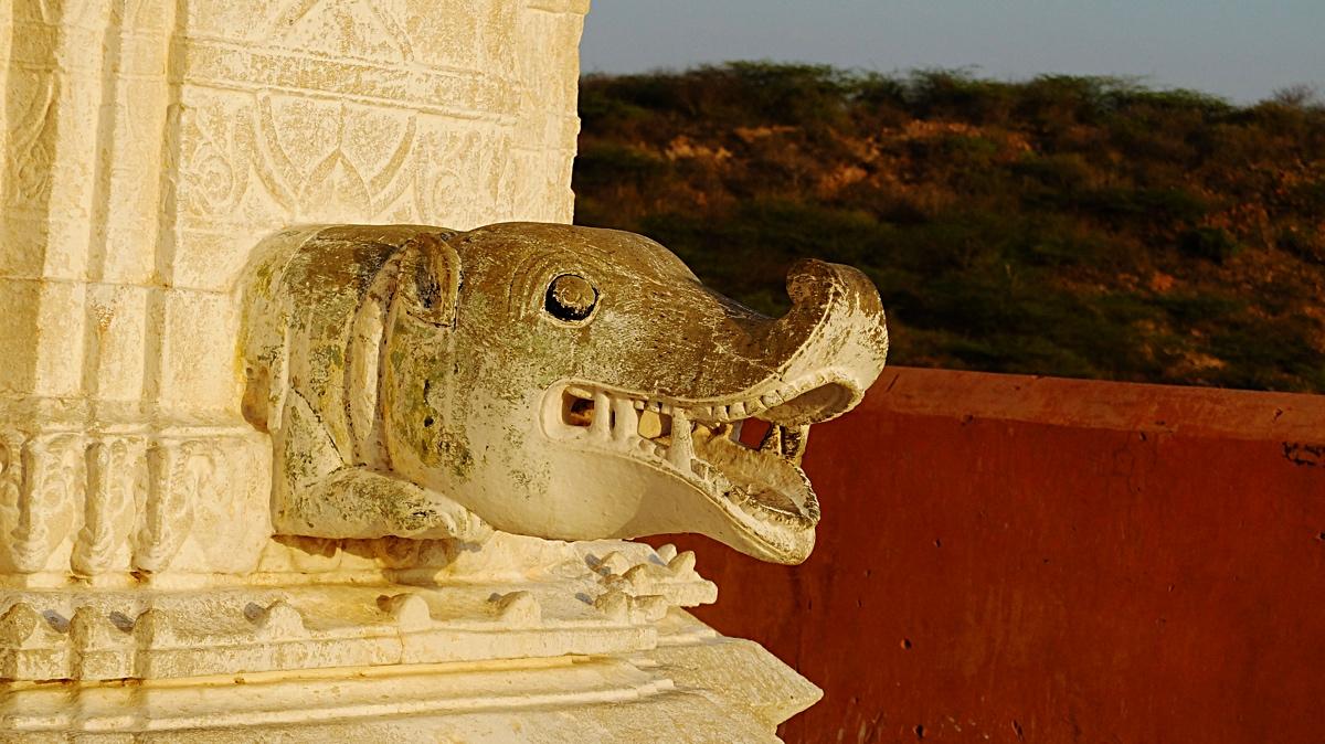 Japir_India_4